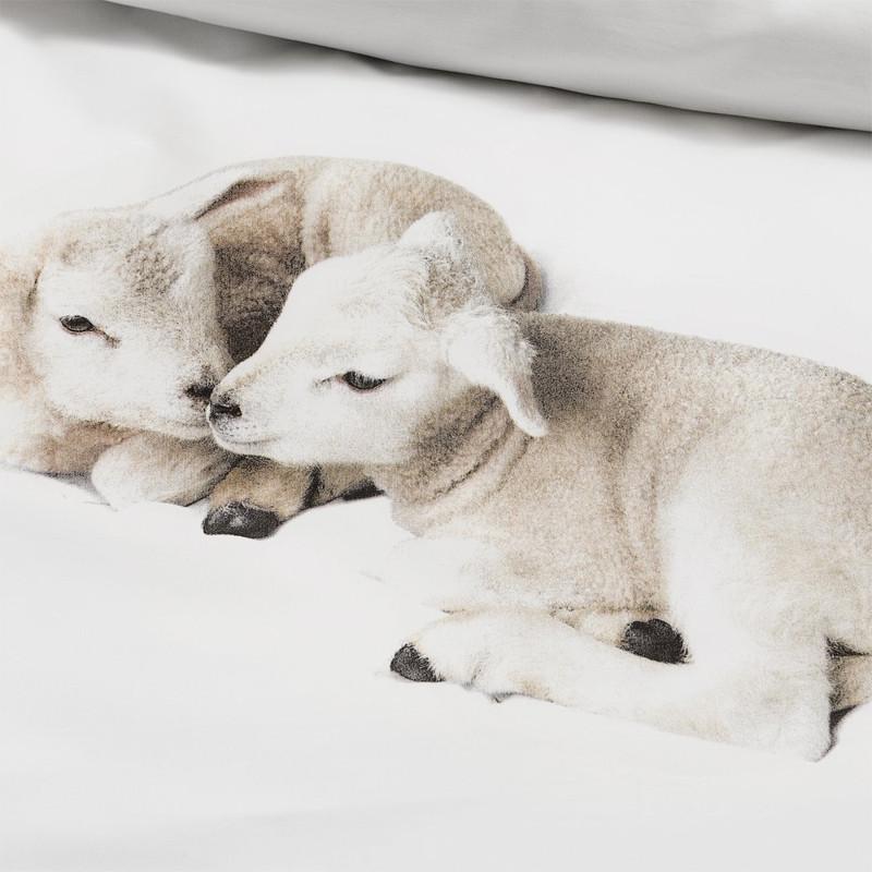 睡觉不孤单 · 全棉双人被罩枕套 wool小羊 200*230cm_好东西_小红书